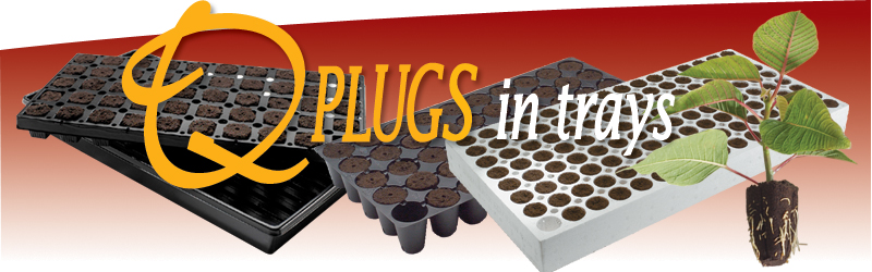 QPlugs in Trays